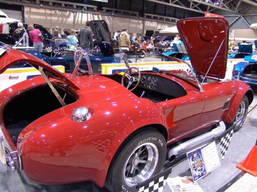 1965-Cobra-Brian-8