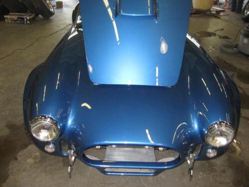 1965-Cobra-Drew-9