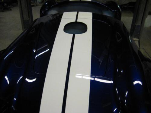Cobra-Chris-2