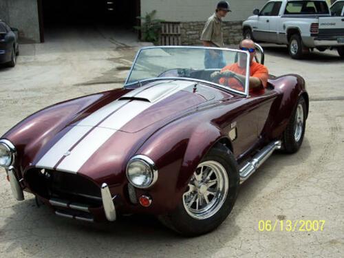 Cobra-Dan-8
