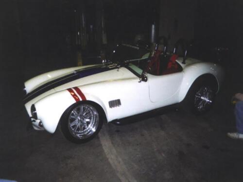 Cobra-Rick-2