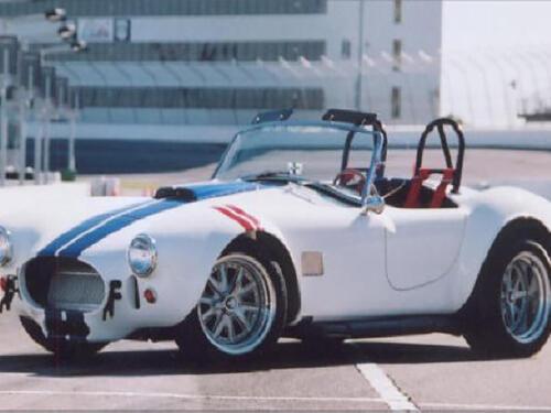 Cobra-Rick-3