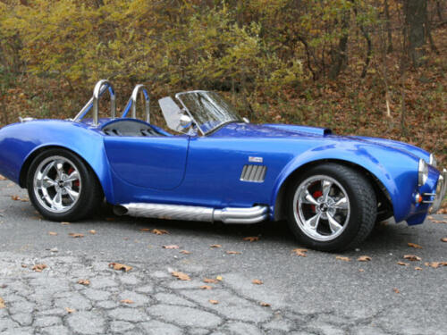 1965-Cobra-5