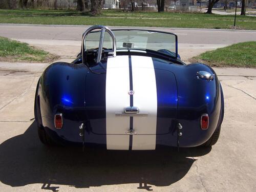 Cobra-Chris-7