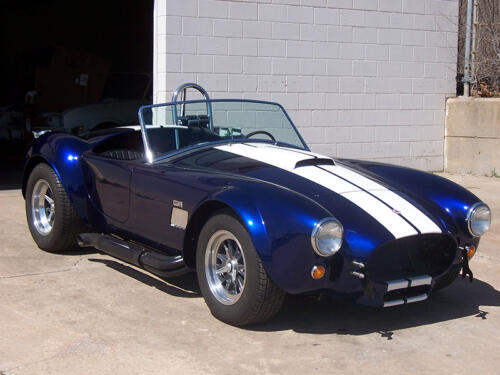 Cobra-Chris-8